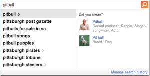 BingSearch